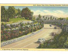 Vintage Riverside CA Riverside California, California History, California Travel, Southern California, Orange Crate Labels, San Bernardino Mountains, San Luis Obispo County, Vintage Postcards, San Diego