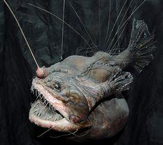 real angler fish - Google Search