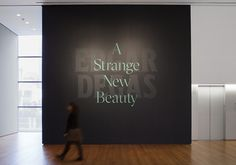 See how a MoMA graphic designer created a typeface that challenges our impression of Degas for our current exhibition Edgar Degas: A Strange New Beauty. [From top: Title wall of Edgar Degas: A Strange. St Michael's Mount, Custom Fonts, Space Gallery, Museum Exhibition, Environmental Design, Design Museum, Typography Letters, Museum Of Modern Art, Moma