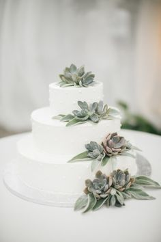 Succulent wedding cake: http://www.stylemepretty.com/collection/2097/