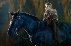 Dree Hemingway Gets Equestrian for Ermanno Scervinos Fall 2012 Campaign by Francesco Carrozzini
