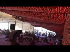 الف الف مبروك للعرسان وعقبال البكاري - 2016