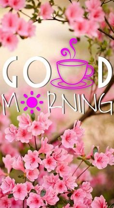 Good Morning Messages: If you like to share Good Morning with your family, relatives, lover & friends. Find out unique collections of Good Morning Msg, best good morning messages for friends in Hindi, morning love messages. Good Morning Beautiful Images, Good Morning Nature, Good Morning Flowers, Good Morning Gif, Good Morning Photos, Good Morning Messages, Morning Pictures, Good Morning Wishes, Sunday Wishes