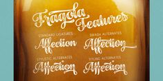 Fragola Demo Font Introducing the new font family. Fragola Font Family designed and shared by Fenotype. Fragola is a bold and groovy script family Font Family, New Fonts, Branding Design, Typography, Advertising Design, Desktop, Business, Letterpress Printing, Promotional Design