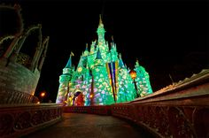 The only Walt Disney World attraction that happens after the Magic Kingdom CLOSES. Amazing.