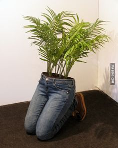 14 MindBlowing DIY Ideas With Old Jeans Turn To Unique Flower Planters is part of Garden - If you've been looking for a quaint and quirky way to make use of those old jeans you just can't wear any longer, we've come across a few brilliant projects Flower Planters, Garden Planters, Flower Pots, Herb Garden, Planter Pots, Vertical Planter, Garden Arbor, Diy Flower, Succulents Garden