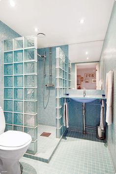 Love the glass wall shower with no curtain or door!  My favorite!
