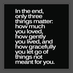 """""""In the end only three things matter: how much you loved, how gently you lived, and how gracefully you let go of things not meant for you."""""""