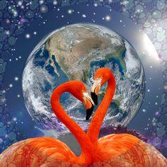 Flamingo, Wandbild, Geschenkidee,Grafikdesign, Erde, Love Web Banner, Flyer, Grafik Design, Portrait, Flamingo, Animals, Inspiration, Earth, Graphics