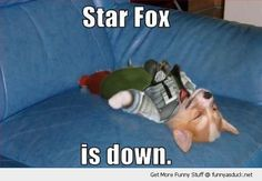 Star Fox Down by ben - A Member of the Internet's Largest Humor Community Funny Gaming Memes, Funny Dog Memes, Funny Games, Funny Dogs, Funny Animals, Cute Animals, Dog Humor, Animal Funnies, Nerd Humor