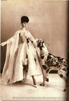 Vintage Vogue with dogs