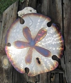 Coastal decor Sand Dollar metal wall art Beach  lovers sandy treasure find Painted with Fire