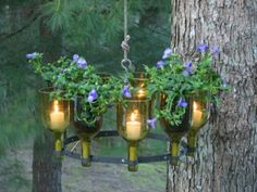 Love this DIY wine bottle chandelier with candles flowers & herbs