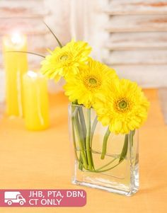 Buy or Send a trio of sunny yellow gerberas set in a small flat square vase, sure to spread cheeriness where ever it may go. This elegant arrangement will convey your feelings and message with simplistic beauty in South Africa. | Item Code NETSP746