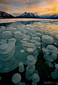 Bubbles trapped beneath a frozen lake in the Canadian Rockies.
