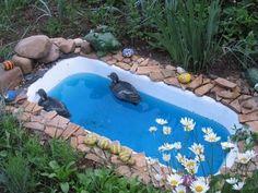 Old Bathtub Pond