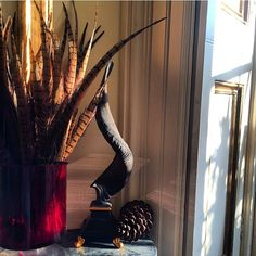 The winter sun streaming through the windows ( and bleaching the sofas ) does look pretty. Kidding us into thinking it's warmer than in is. #winter#sun#home#shelfie#counteyhouse#countryliving#pheasant#feathers#style#decor#interior#mantle#pinecone#fircone#vignette#england#shutters#classic