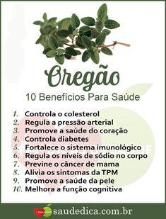 Oregão Health Diet, Health Fitness, Gourmet Salt, Beauty Treats, Medicinal Plants, Herbal Medicine, Food Dishes, Home Remedies, Natural Health