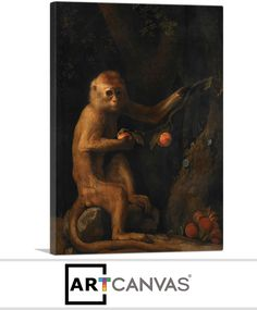 Ready-to-hang A Monkey Canvas Art Print for Sale canvas art print for sale. Free hanging accessories and insurance. Art Prints For Sale, Canvas Art Prints, Monkey, Painting, Monkeys, Painting Art, Paintings, Painted Canvas, Drawings