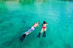 Snorkeling in Trinidad and Tobago