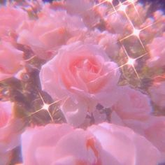 Pink Tumblr Aesthetic, Baby Pink Aesthetic, Iphone Wallpaper Tumblr Aesthetic, Aesthetic Pastel Wallpaper, Aesthetic Colors, Flower Aesthetic, Aesthetic Collage, Aesthetic Wallpapers, Whats Wallpaper