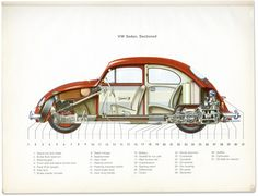 VW Sedan, Sectioned. From a 1965 Beetle owner's service manual