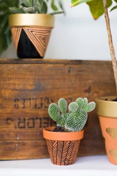 DIY Gorgeous Ways To Decorate Your Terra Cotta Pots: Sharpie-Painted Terra Cotta DIY Gorgeous Ways To Decorate Your Terra Cotta Pots: Sharpie-Painted Terra Cotta Pots; Painted Plant Pots, Painted Flower Pots, Painted Pebbles, Hand Painted, Pots D'argile, Decorated Flower Pots, Sharpie Paint, Pot Plante, Succulents In Containers