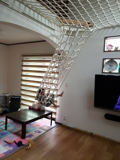 Diy home decor Loft Design, Kids Room Design, House Design, Design Design, Kids Bedroom Furniture, Room Decor Bedroom, Indoor Hammock, Cool Rooms, Home Interior Design