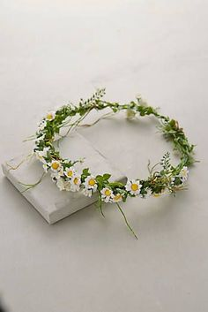 at anthropologie Paperwhites Floral Crown Hippie Flowers, Flowers In Hair, Wedding Flowers, Daisy Crown, Diy Flower Crown, Hair Accessories For Women, Up Hairstyles, Flower Power, Beautiful Flowers