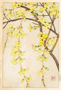 Kawarazaki Shodo (1889-1973) | Forsythia