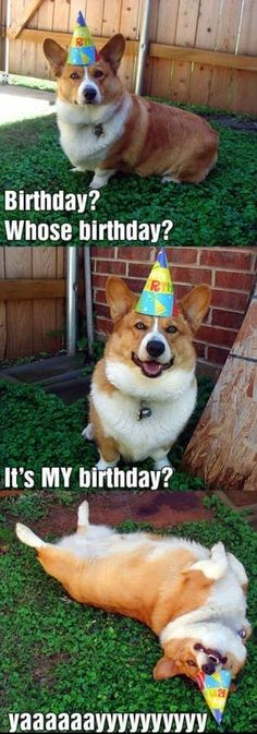 That's how I feel on my Birthday!!!