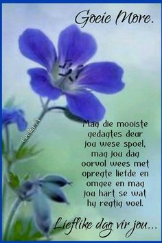 Good Morning Good Night, Good Morning Wishes, Good Morning Quotes, Me Quotes, Qoutes, Evening Greetings, Afrikaanse Quotes, Goeie Nag, Goeie More