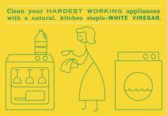Cleaning the washing machine and dish washer with vinegar