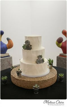 what a cake! I love that it looks like adobe. Stephen and Tavos Fort Worth Wedding at Artspace 111