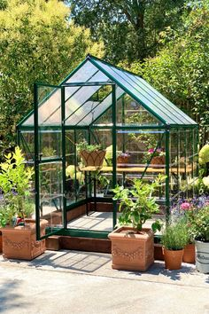 Sthep is so very excited to start using her new Hybrid 6x8 greenhoue to venture into the world of seedlings. Polycarbonate Roof Panels, Polycarbonate Greenhouse, 6x8 Greenhouse, Greenhouse Ideas, Wooden Greenhouses, Roof Vents, Water Collection, Drip Irrigation, Rust Free