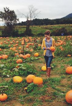 Fall outfit • photography • #jcrew • H&M • gingham • tall boots • pumpkin patch