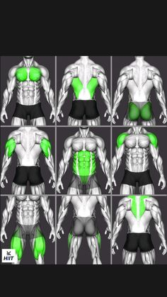 Abs And Cardio Workout, Gym Workouts For Men, Full Body Workout Routine, Gym Workout Chart, Gym Workout Videos, Abs Workout Routines, Gym Workout For Beginners, Weight Training Workouts, Fitness Workouts