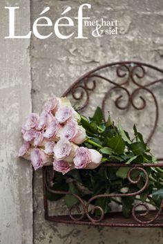 Franse inspirasie/ French inspiration Foto: Candice Askham www.leef.co.za