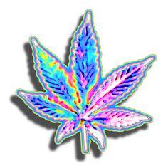 Pot Leaf Transparent Tumblr