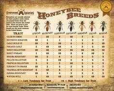 Honeybee traits by breed