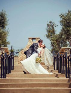 Olive Grove | Léal Vineyards | Wedding