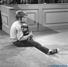 """Ron Howard in """"Dogs, dogs, dogs"""" The Andy Griffith Show."""