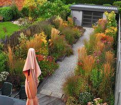 Prairie Garden - wild abundance within neat, framed edges.  Still room for lawn, garden design, cottage garden, gravel pathway