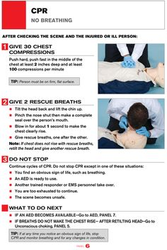 CPR Guide printable guide from American Red Cross. Cpr Instructions, How To Perform Cpr, Cardiopulmonary Resuscitation, First Aid Cpr, Cpr Training, Family Nurse Practitioner, Health Class, Medical Science, Medical School