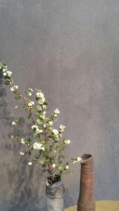 Grandissimo formato effetto pietra antracite da Cotto. Pad. 15 #Cersaie2015 #MCaroundCersaie