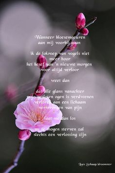 Gedicht Naderend afscheid Lose Something, After Life, Mother Quotes, In Loving Memory, Miss You, Grief, Qoutes, Motivational Quotes, Poems