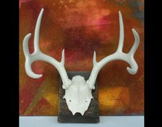 White Deer Antlers - Wall Hanging Painted Real Antlers on Etsy, $99.00