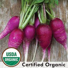 Heirloom Radish Seeds - Organic & Non-GMO Radish   Seed Savers Exchange