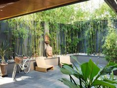 A great idea for a small private yard - dark tall walls with bamboo for a green edge. I'd probably put flagstones and moss on the ground myself though.