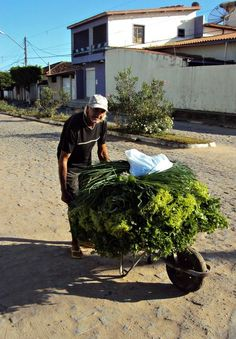 The Vegetable Leisure Salesman Photo by jose valdemar caruso -- National Geographic Your Shot National Geographic Photos, Amazing Photography, Shots